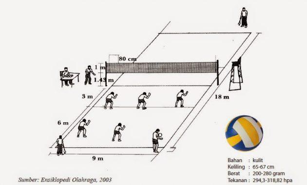 Ukuran Lapangan Bola Voli Standar Nasional Internasional Gambarnya Perpustakaan Id