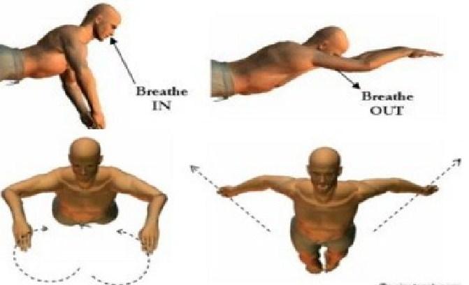 Latihan Gerakan Pernafasan Renang Gaya Dada