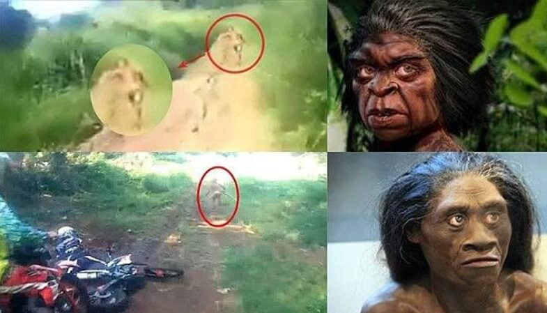 Sejarah Suku Mante