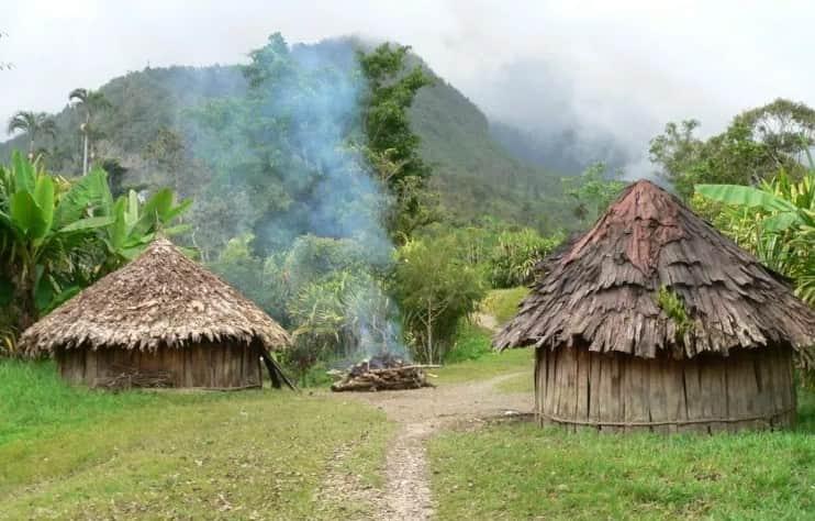 rumah wamai Papua