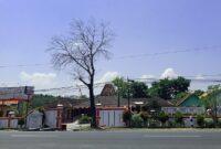 Pembagian Wilayah yang Ada di Bawah Desa